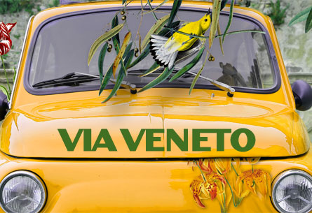 Via Venetto Dubai Artwork and Menus